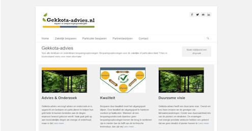 Website Gekkota Advies